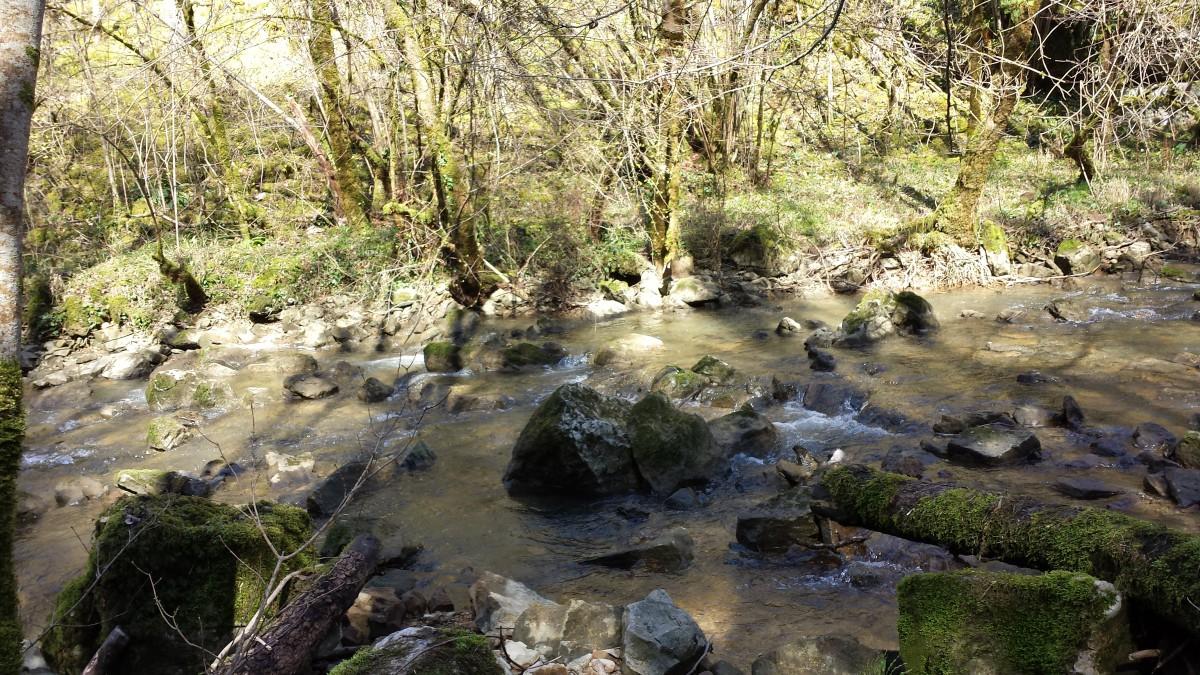 Moulin des sauts – Fluss